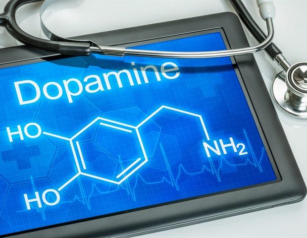 Низкий допамин может указывать на ранние болезни Альцгеймера