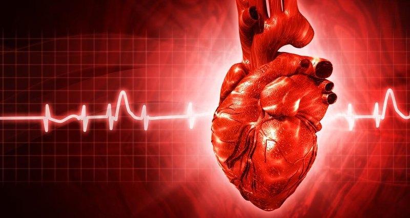Все что вам нужно знать о болезнях сердца