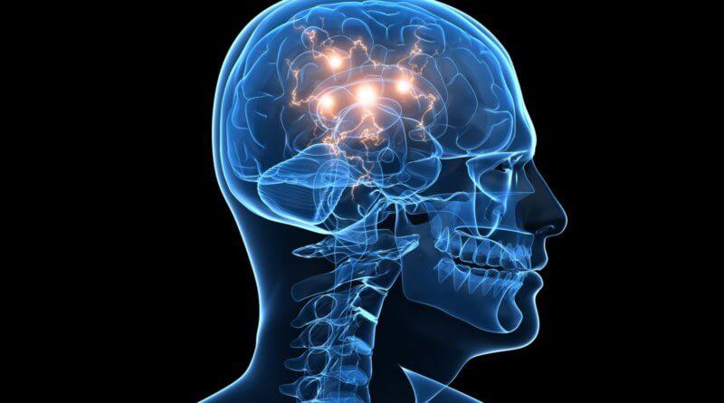 Как мозг создает субъективный опыт времени
