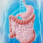 Может ли употребление желудочно-кишечных препаратов повышать риск аллергии?