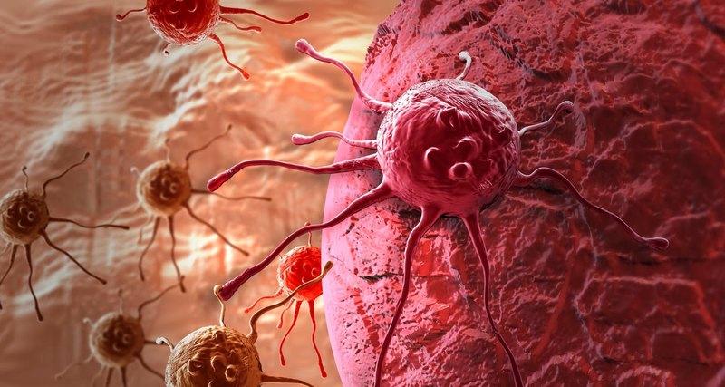 Рак: эти 4 гена помогут предсказать исход