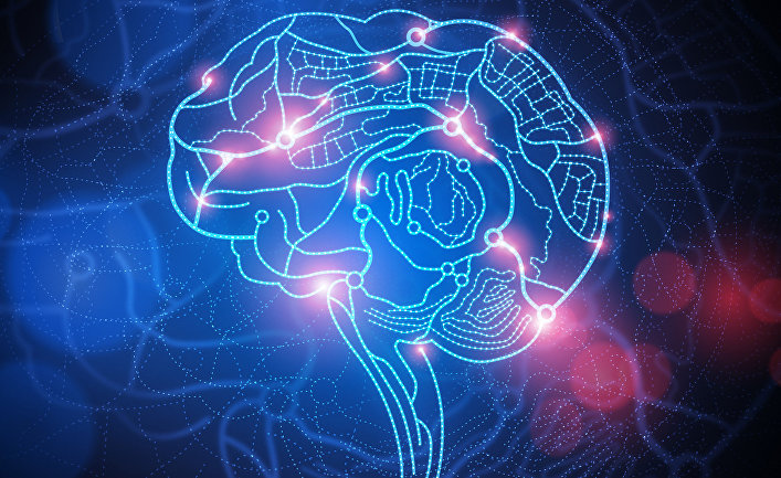 Мозг находит способ адаптироваться, даже когда мы удаляем половину