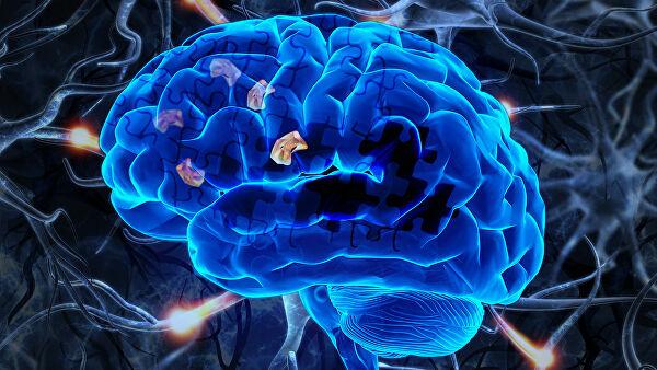 Исследование на мышах проверяет новый подход против болезни Альцгеймера