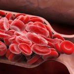 Избыток жира в крови может привести к повреждению органов
