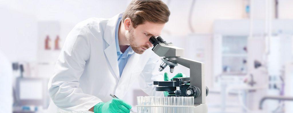 Может ли редактирование эпигенома предотвратить нарушения развития?