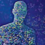 Что такое микробиота кишечника и микробиом человека?