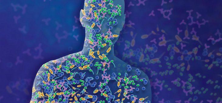 Могут ли кишечные бактерии предсказать вашу личность?