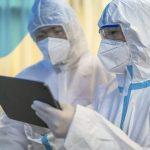 Существует ли более одного штамма нового коронавируса?
