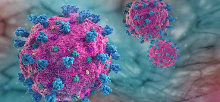 Исследователи идентифицируют многократные молекулы, которые выключают реакцию полимеразы SARS-Cov-2