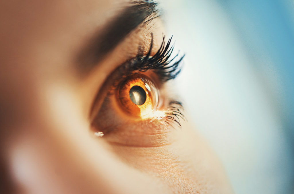 Сканер глаза может обнаружить молекулярное старение