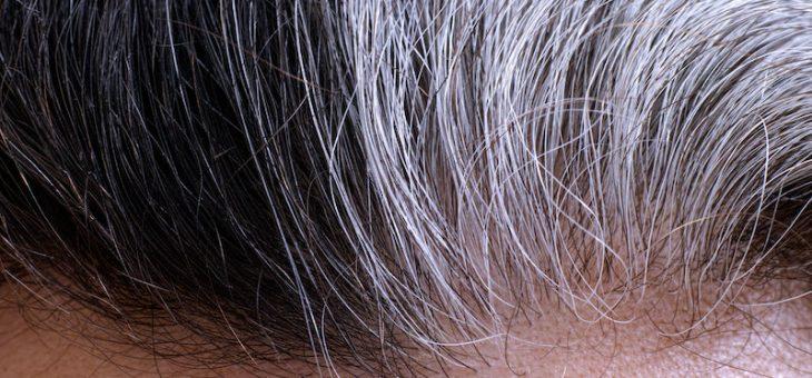 Стресс может сделать волосы седыми – и это обратимо, как выяснили исследователи