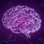 Команда находит механизм мозга, который автоматически связывает объекты в нашем сознании